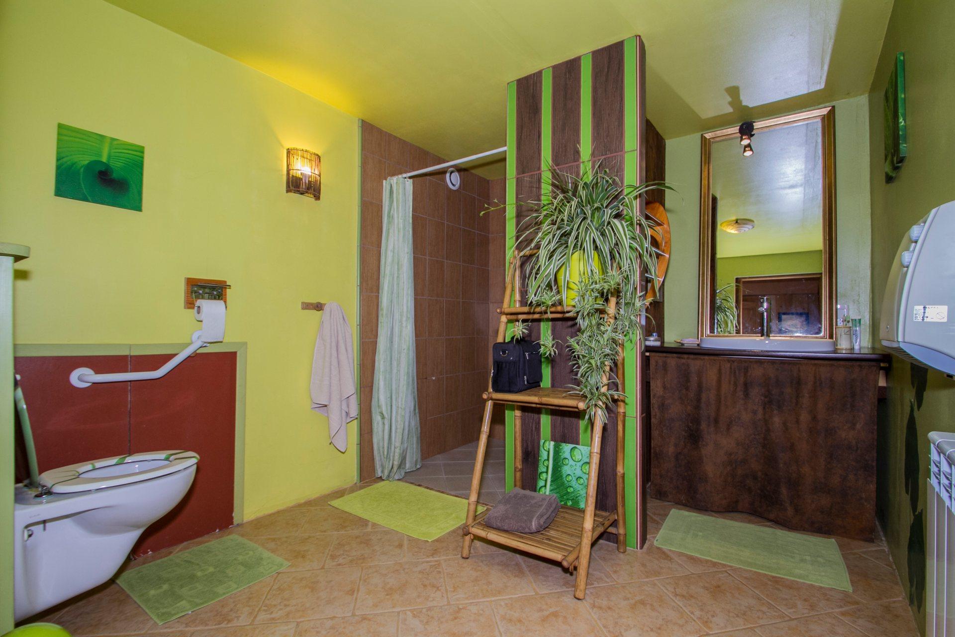 """La salle d'eau """"Jungle """""""