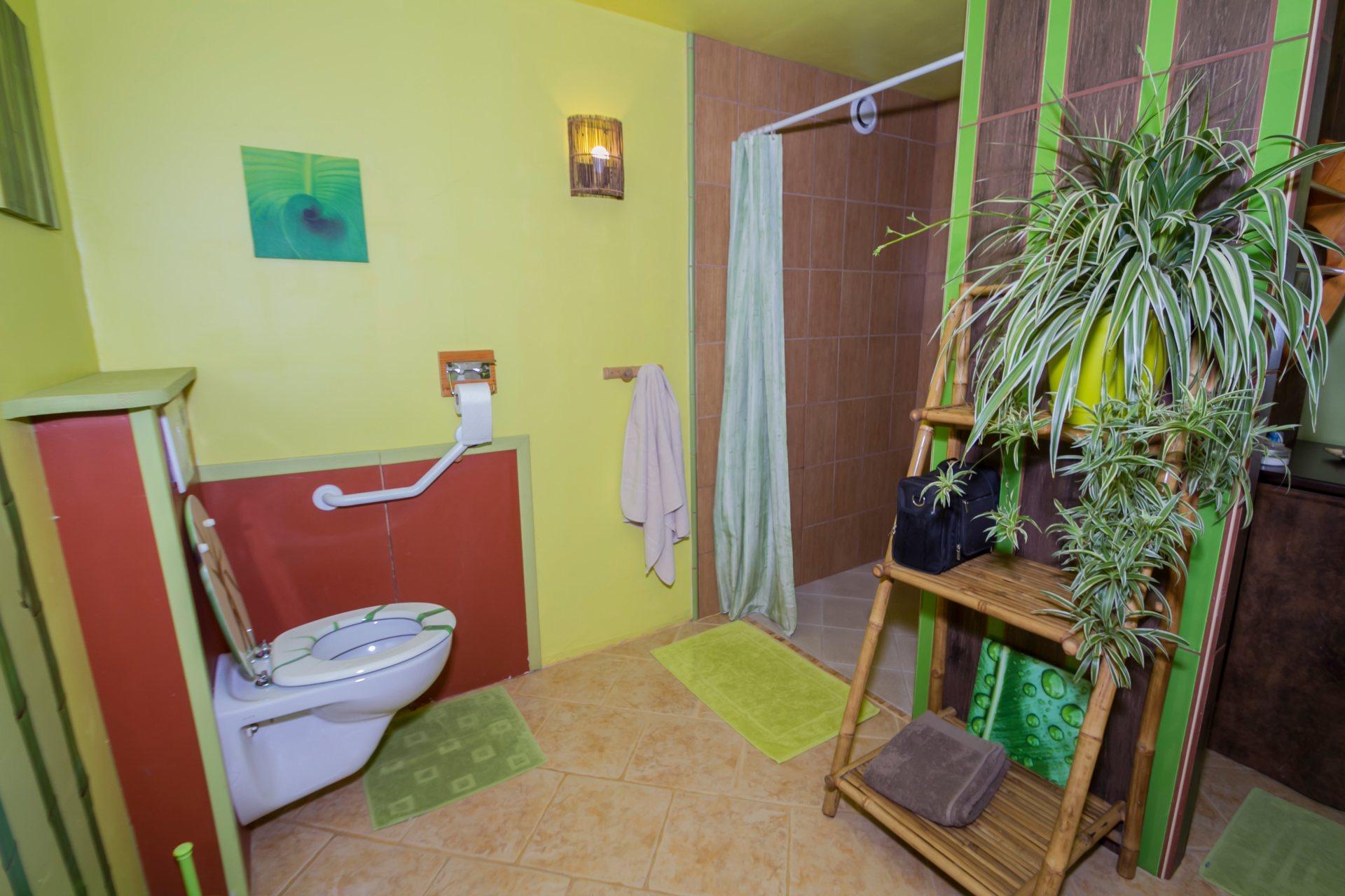 Les WC de la jungle